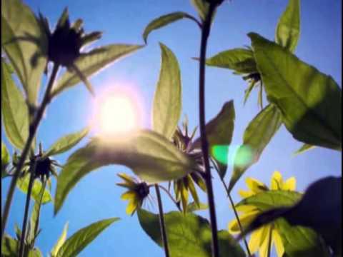 Madre natura i capolavori di dio youtube for Immagini natura gratis