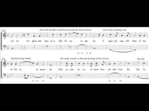Jacopo Peri, L'Euridice (1600), Scene 2, the Messenger Scene
