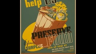 Make Your Own Budget Food Dehydrator | Fairy Odd Prepper