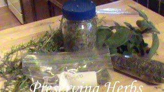 Preserving Herbs:  Rosemary, Sage, and Oregano