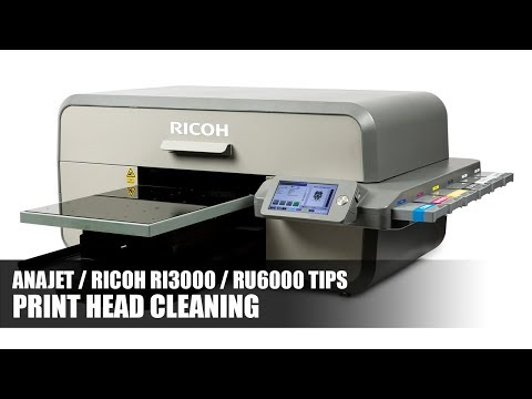 Run a print head cleaning - Anajet Ricoh RI3000 - Digital T-Shirt Shop