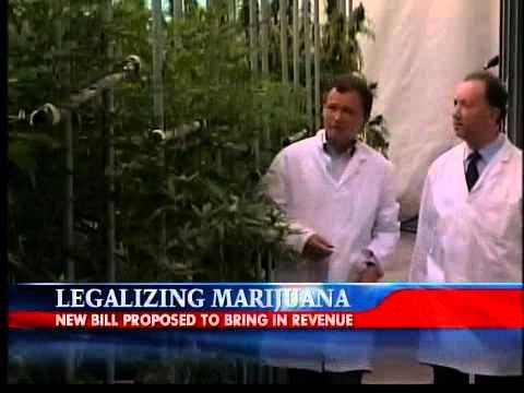 Citizen Petition to Legalize Marijuana
