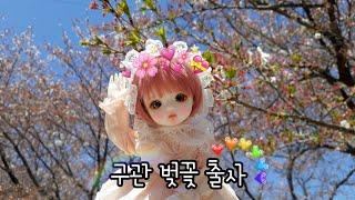 ❥ 구관 벚꽃 출사영상 / 리나슈슈 크림 출사 / BJ…
