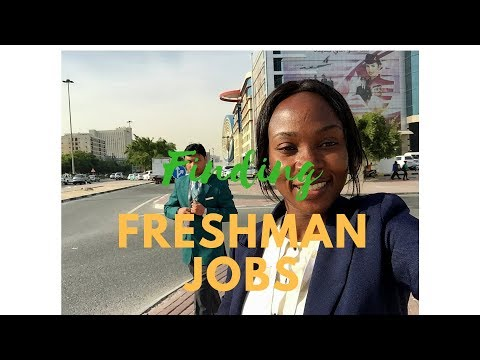 How to find a job  in Qatar as a (Freshman)