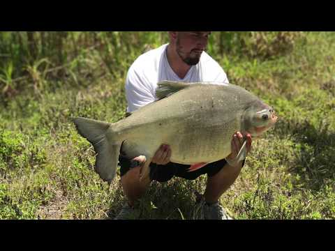 JON CAUGHT A GIANT PACU IN MIAMI!!!!!