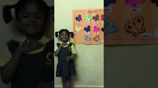 Science fair 2019 Nursery-Apple  ,topic-Colours by Vanshitha  @crayons school Nizampet