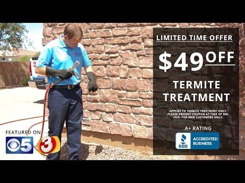 Arizona Termite Control | Arizona Best Choice Pest & Termite Services