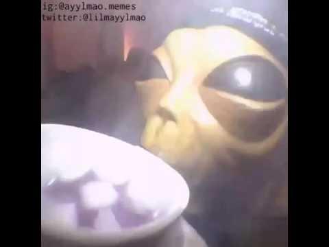 hqdefault high af alien youtube