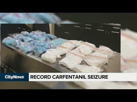 $3.2 Million In Carfentanil Off The Streets Of Edmonton