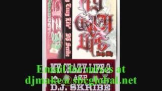 My Crazy Life - Dj Skribe 90