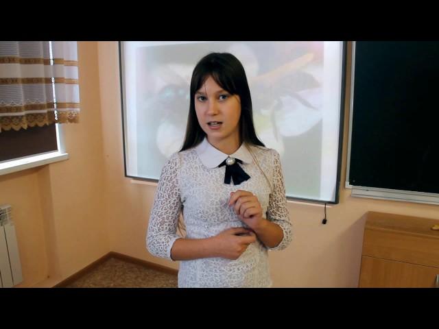 Изображение предпросмотра прочтения – ЕлизаветаБерёзина читает произведение «Муха и Пчела» И.А.Крылова