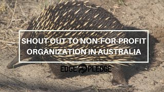 Shout out to 6,000 environment focused Non-for-profits in Australia