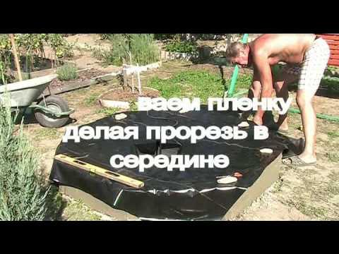 Фонтан для пруда на даче фото, видео и устройство