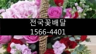 전국꽃배달꽃집#전주우아동꽃집#전주시꽃배달전문#전주장례식…