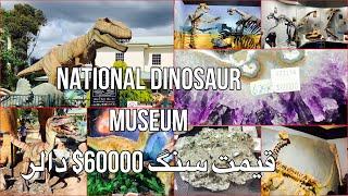 Family Vlog 53 National Dinosaur Museum