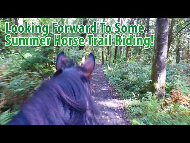 Looking Forward To Some Summer Horse Trail Riding!