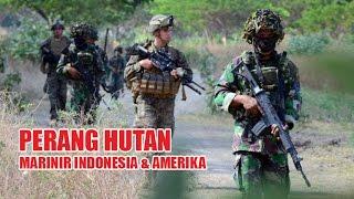 Video DI HUTAN INDONESIA, MARINIR AMERIKA BERLATIH PERANG. download MP3, 3GP, MP4, WEBM, AVI, FLV Februari 2018