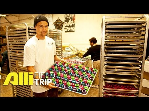 Alli Skate Videos - Field Trip: How Bones Wheels Are Made + Factory Tour with Jordan Hoffart