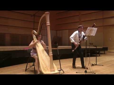 Antonio Vivaldi Sonata for bassoon and harp in A minor.Roman Reznik,Delphine Constantin -Reznik