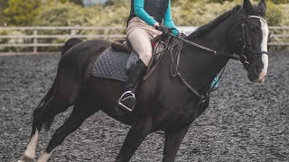 Never Give Up | Equestrian Motivation | Horse Riding After 2 Years