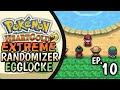 Bug Catching Contest ! | Pokemon HeartGold Extreme Randomizer Egglocke EP10 In Hindi