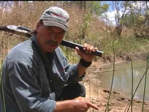 Mark Sullivan's Greatest Hippo Charges DVD Vol. 1-DIIZCHE SAFARI ADVENTURES Clip