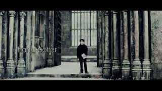 Красивый клип по Гарри Поттеру