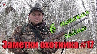 Охота на зайца с русским спаниелем