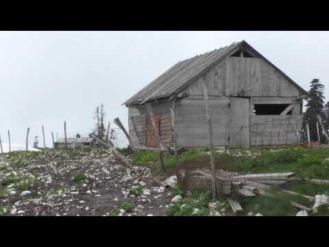 Абхазия 2017 гора Мамзышха (Альпийские луга)