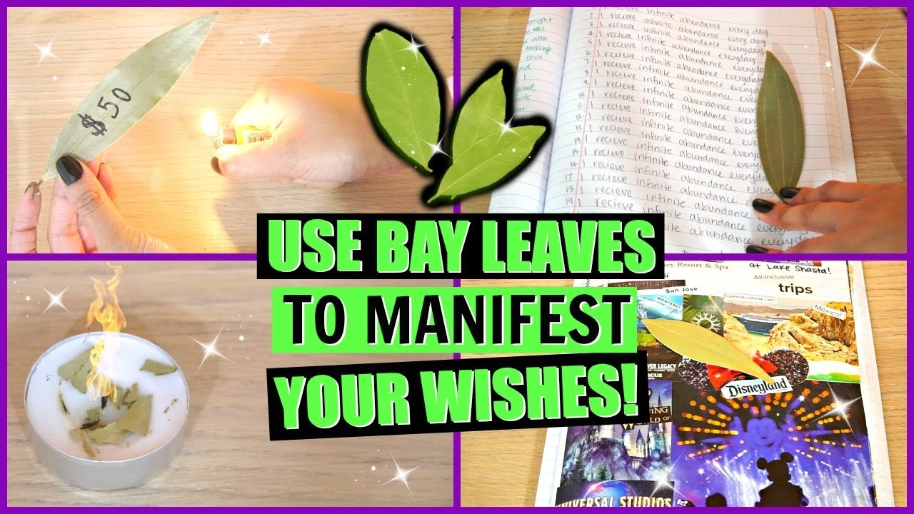 5 WAYS TO USE BAY LEAVES TO MANIFEST YOUR WISHES! │HOW TO ATTRACT WHAT YOU  WANT WITH A BAY LEAF!