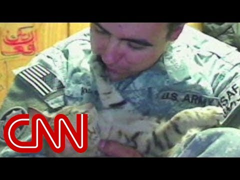 Soldier goes to great lengths to bring home cat