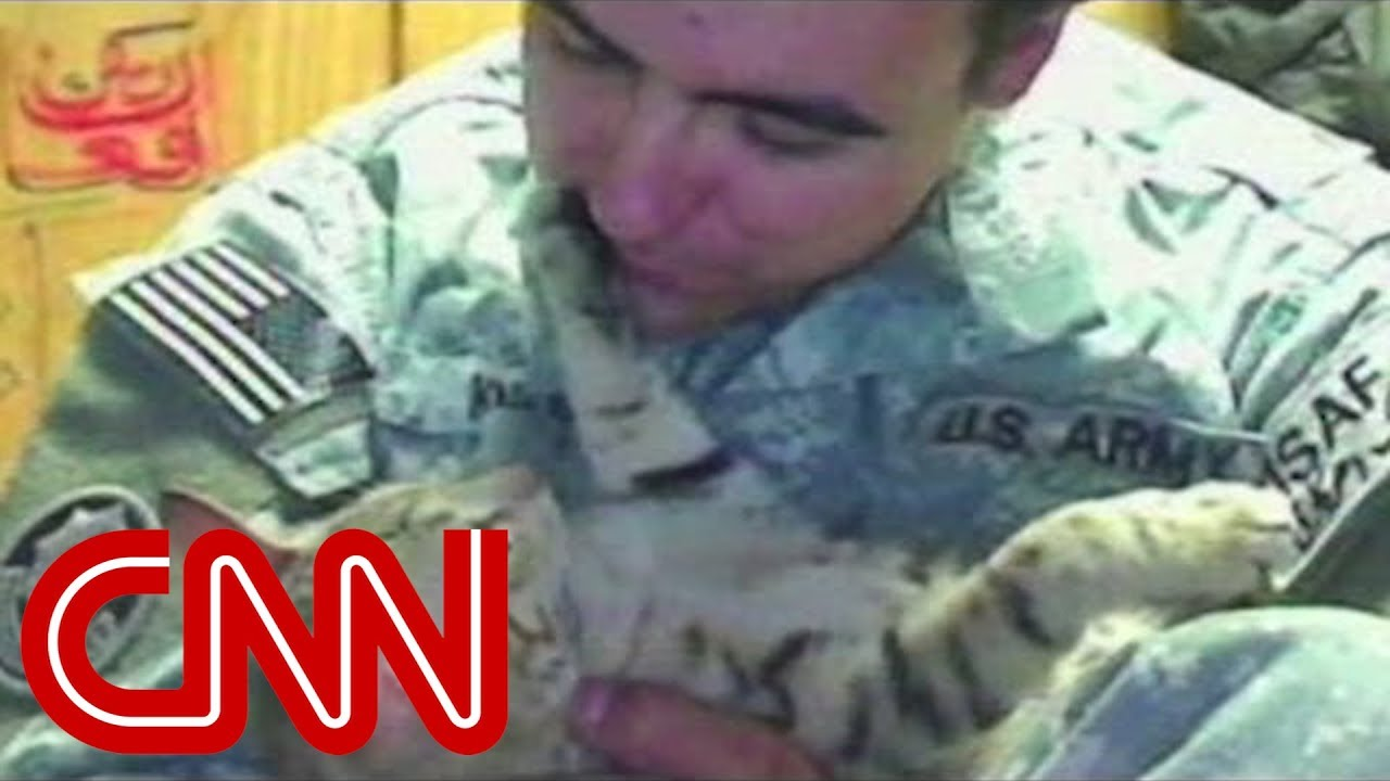 Soldier Goes To Great Lengths To Bring Home Cat Youtube