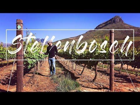 Travel Vlog - Cape Town, South Africa: Stellenbosch