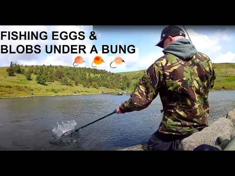 Fly Fishing Trout Eggs & Blobs Bung Indicator | Pennine Trout Fishery UK