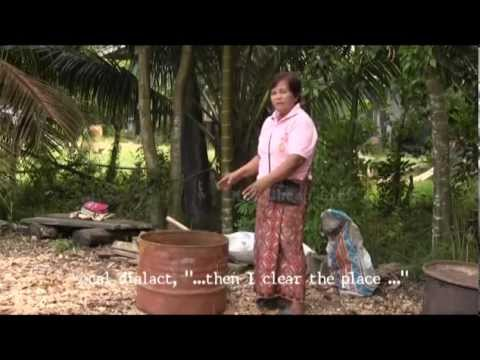 Local Knowledge of Palm Shell Charcoal Production