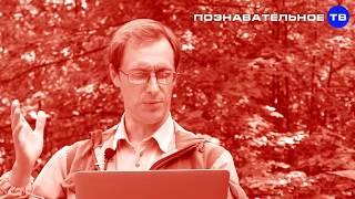 Запрещённое слово для российской власти Познавательное ТВ, Артём Войтенков