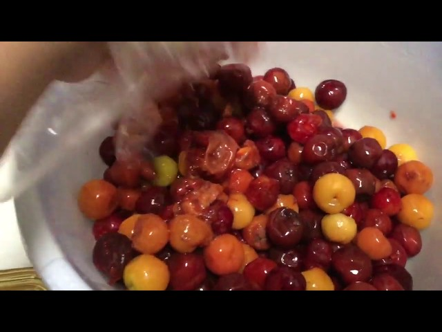 Quanh Bếp ở Mỹ: Lam Nuoc So Ri Uong 1/11 (Acerola Cherry Juice) - NVTC2
