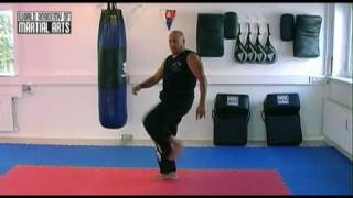 Krav Maga - 6 basic kick techniques in Krav Maga LI