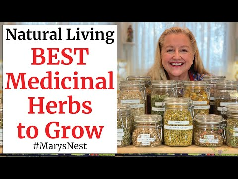 10 Essential Medicinal Herbs to Grow for Making Home Remedies