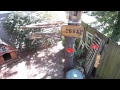 Atlanta Bird Feeder Cam
