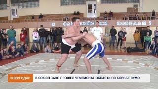 Чемпионат области по борьбе сумо