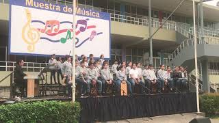 Muestra de Música 2019