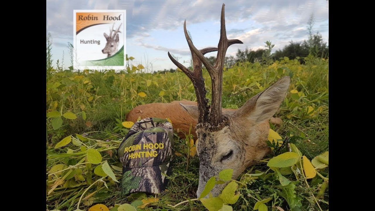MEDAL ROEBUCK HUNTING Hunting in Poland with Robin Hood Hunting Agency