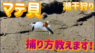 マテ貝#潮干狩り#潮干狩り道具 五月の大型連休目前‼  今回は、貝掘りマ...