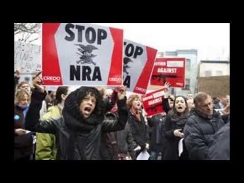 Gun Control Essay 4