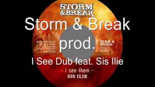 Storm & Break - Gary Clunk & Hatman feat Sis Ilie: I See Dub