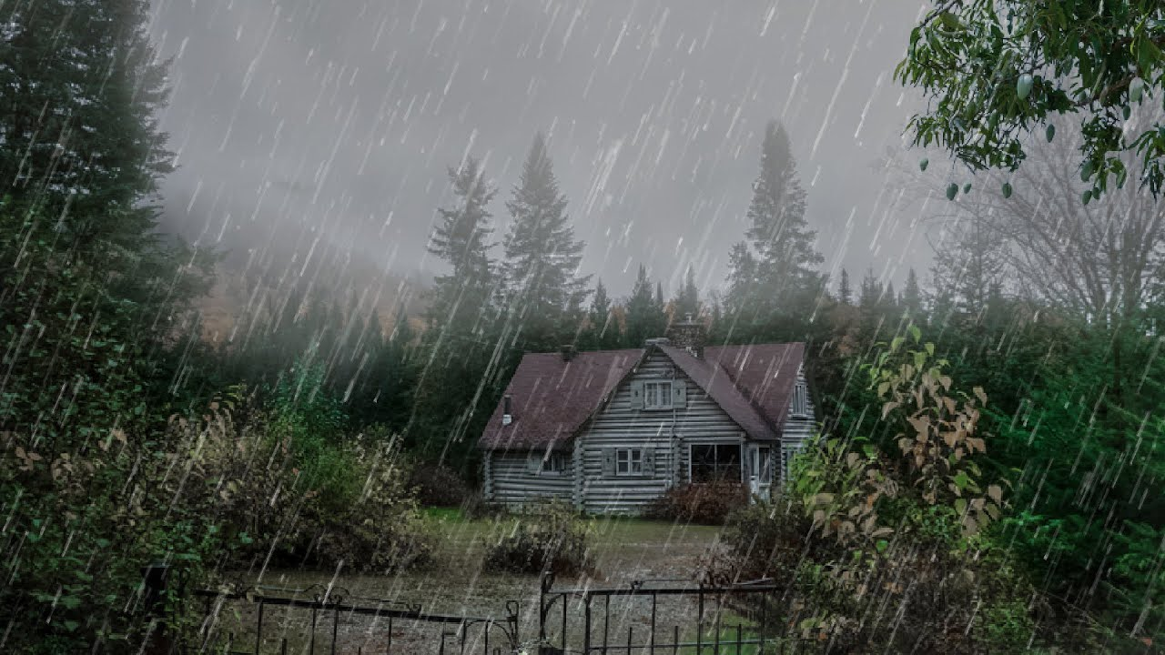 Los Mejores Sonido de Lluvia en Techo en Bosque Brumoso para Dormir - Lluvia para Sanar , Relajante
