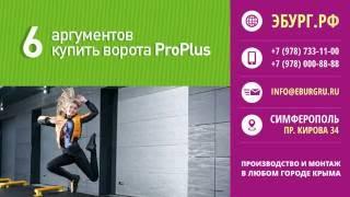 видео Промышеленные ворота в Симферополе, Краснодаре, Крыму купить, цена