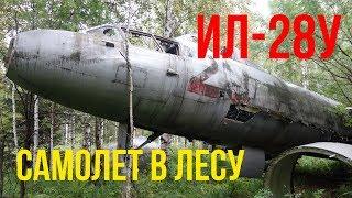 Пошли в лес за грибами, нашли самолет. Ил-28У