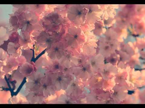 꽃날 (Flower Day)